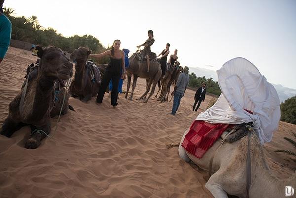 arrivée mariée à dos de chameau merzouga